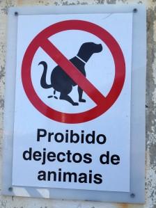 Dog Fouling - Madeira