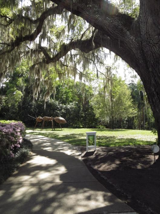 Leu Gardens 006a
