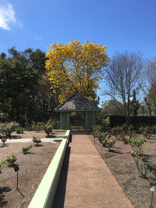 Leu Gardens 025
