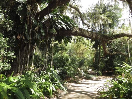 Leu Gardens 031