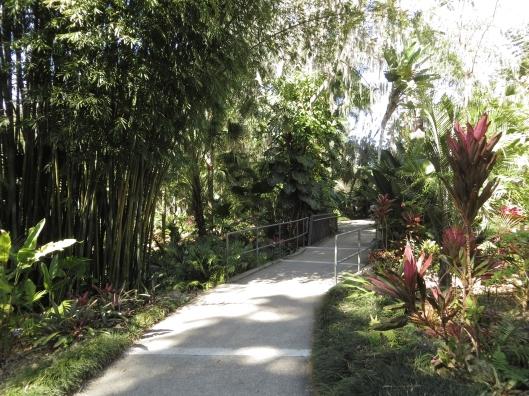 Leu Gardens 034