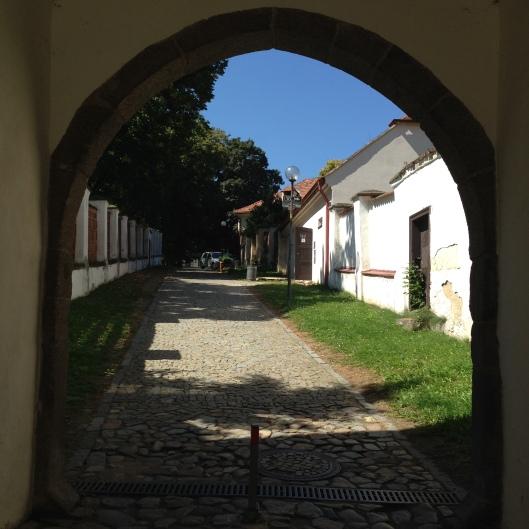 Trebic - Basilica 11
